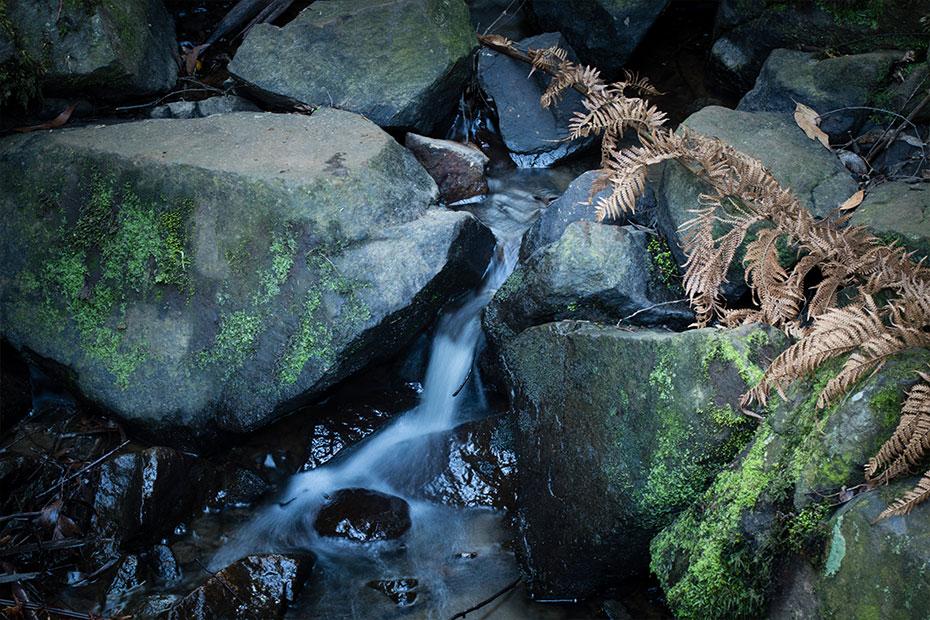Sherbrooke Falls